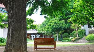 公園の庭のベンチの写真素材 [FYI04738480]