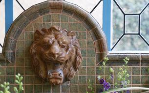 獅子の水栓の写真素材 [FYI04738495]