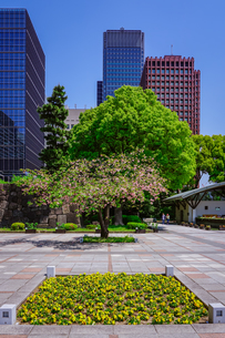 和田倉噴水公園、新型コロナウィルス騒ぎで噴水稼働停止の写真素材 [FYI04738593]
