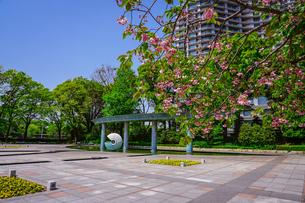 和田倉噴水公園、新型コロナウィルス騒ぎで噴水稼働停止の写真素材 [FYI04738594]