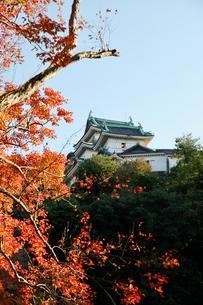 和歌山城の写真素材 [FYI04738646]