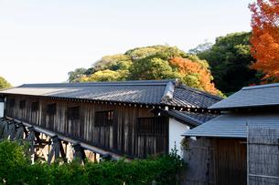 和歌山城の写真素材 [FYI04738647]