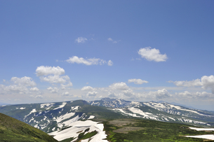 高根ケ原とトムラウシ山(北海道・大雪山)の写真素材 [FYI04738739]