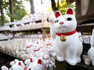 東京都 豪徳寺の招き猫の写真素材 [FYI04738895]