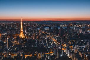 夜明けの東京タワーと東京都心の街並みの写真素材 [FYI04739187]