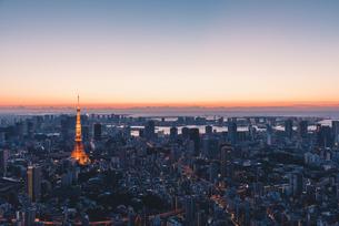 夜明けの東京タワーと東京都心の街並みの写真素材 [FYI04739200]