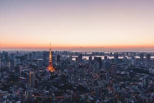 夜明けの東京タワーと東京都心の街並みの写真素材 [FYI04739201]