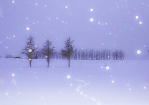 冬のメルヘンの写真素材 [FYI04739241]