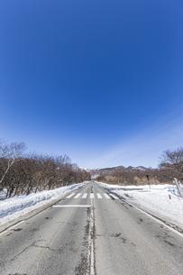 奥日光戦場ヶ原 三本松茶屋前の直線道路の写真素材 [FYI04739257]