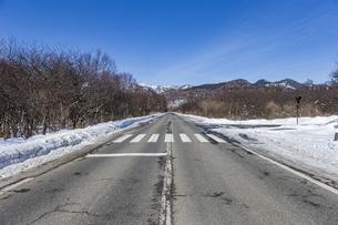 奥日光戦場ヶ原 三本松茶屋前の直線道路の写真素材 [FYI04739259]
