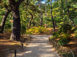 【香川県 高松市】栗林公園の園内の様子 日本庭園の写真素材 [FYI04739300]