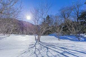 奥日光湯元の雪原風景に残る獣の足跡と暖かな太陽の陽射の写真素材 [FYI04739376]
