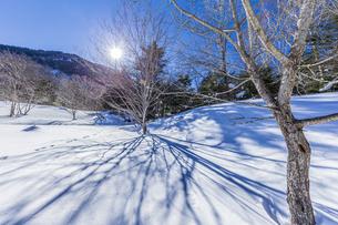 奥日光湯元の雪原風景に残る獣の足跡と暖かな太陽の陽射の写真素材 [FYI04739386]