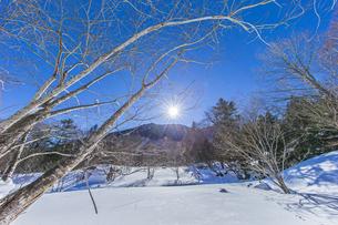 奥日光湯元の雪原風景に残る獣の足跡と暖かな太陽の陽射の写真素材 [FYI04739391]