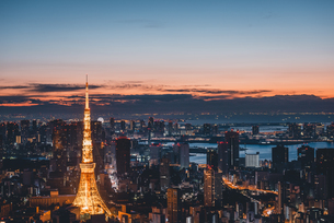 夜明けの東京タワーと東京都心の街並みの写真素材 [FYI04739485]