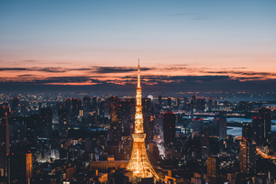 夜明けの東京タワーと東京都心の街並みの写真素材 [FYI04739486]