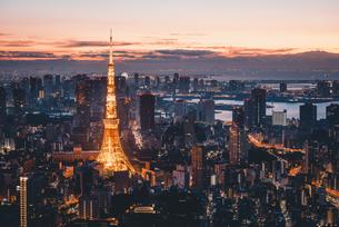 夜明けの東京タワーと東京都心の街並みの写真素材 [FYI04739491]