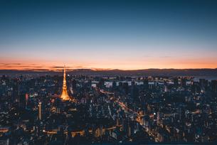 夜明けの東京タワーと東京都心の街並みの写真素材 [FYI04739492]