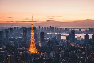 夜明けの東京タワーと東京都心の街並みの写真素材 [FYI04739498]