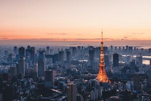 夜明けの東京タワーと東京都心の街並みの写真素材 [FYI04739501]