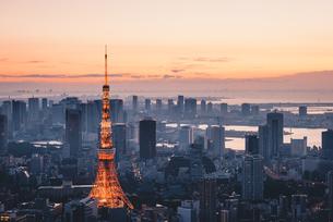 夜明けの東京タワーと東京都心の街並みの写真素材 [FYI04739503]
