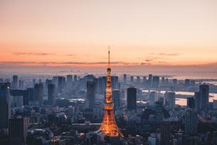 夜明けの東京タワーと東京都心の街並みの写真素材 [FYI04739505]