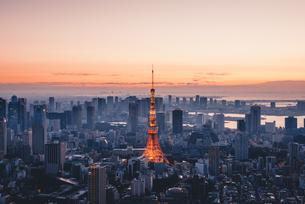 夜明けの東京タワーと東京都心の街並みの写真素材 [FYI04739507]