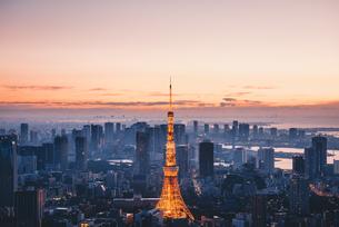 夜明けの東京タワーと東京都心の街並みの写真素材 [FYI04739512]