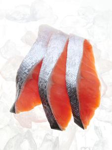 氷にのせた鮭の切り身の写真素材 [FYI04740145]