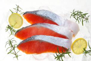 鮭の切り身の写真素材 [FYI04740147]