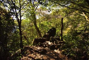 筑波山の山道の写真素材 [FYI04740337]