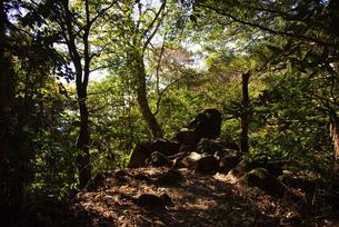 筑波山の登山道風景の写真素材 [FYI04740338]
