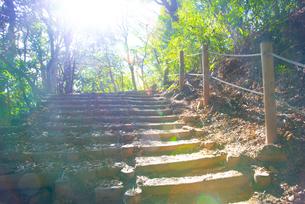 筑波山の山道(階段)の写真素材 [FYI04740346]