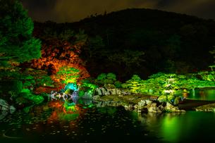 【香川県 高松市】秋の夜間ライトアップの栗林公園 日本庭園の写真素材 [FYI04740355]