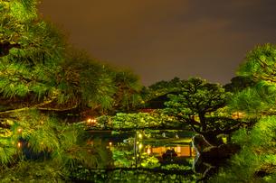 【香川県 高松市】秋の夜間ライトアップの栗林公園 日本庭園の写真素材 [FYI04740359]