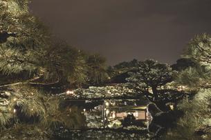 【香川県 高松市】秋の夜間ライトアップの栗林公園 日本庭園の写真素材 [FYI04740364]