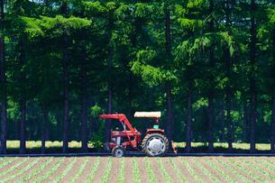 トラクターと畑の写真素材 [FYI04740454]