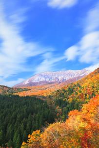 秋の鍵掛峠より大山と紅葉の写真素材 [FYI04740594]
