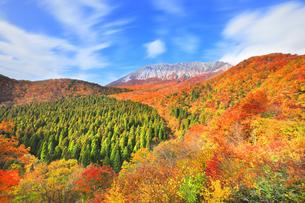 秋の鍵掛峠より大山と紅葉の写真素材 [FYI04740595]