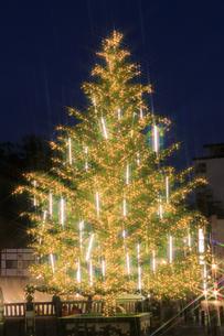 草津温泉のクリスマスツリーの写真素材 [FYI04740641]