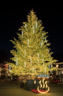草津温泉のクリスマスツリーの写真素材 [FYI04740643]