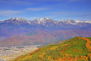 鷹狩山から望む仁科三山と紅葉の樹林の写真素材 [FYI04740669]
