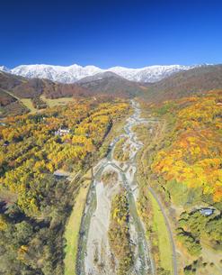白馬大橋付近から望む白馬連峰と松川と紅葉の樹林の写真素材 [FYI04740676]