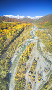 白馬大橋付近から望む白馬連峰と松川と紅葉の樹林の写真素材 [FYI04740678]