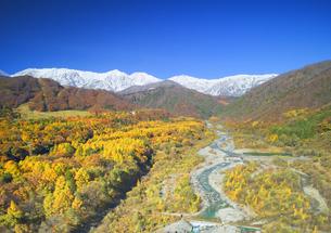 白馬大橋付近から望む白馬連峰と松川と紅葉の樹林の写真素材 [FYI04740679]