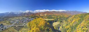 信濃森上から望む白馬連峰と紅葉の樹林のパノラマの写真素材 [FYI04740681]