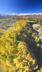 信濃森上から望む白馬連峰と紅葉の樹林の写真素材 [FYI04740682]