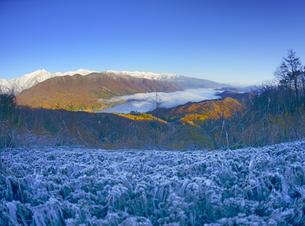権現山から望む朝の北アルプスと青木湖と霜柱の写真素材 [FYI04740705]