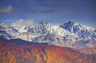権現山から望む朝の白馬三山と紅葉の写真素材 [FYI04740706]