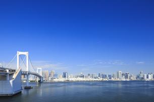 レインボーブリッジと東京湾岸の街並みの写真素材 [FYI04740884]